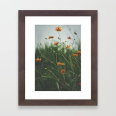Molecules Framed Art Print
