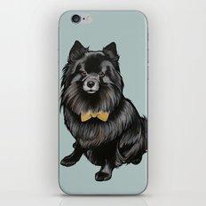 Ozzy the Pomeranian Mix iPhone & iPod Skin