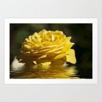 Yellow Rose Flood Art Print