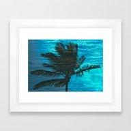 Swimming Palm Framed Art Print