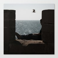A dream of freedom Canvas Print