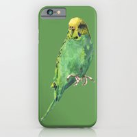 iPhone & iPod Case featuring Budgie, parakeet, budgerigar, whos a pretty boy then, bird art by eastwitching