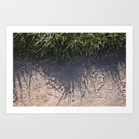 The Grass And It's Sha… Art Print