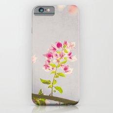 Dreamy Bougainvilleas iPhone 6 Slim Case