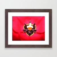 Tulip Eyes Framed Art Print