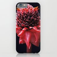 iPhone & iPod Case featuring Scarlet by Noah Bolanowski