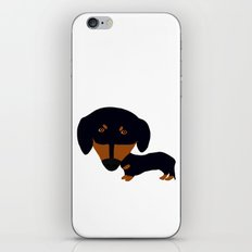 Dachshund (black and tan) iPhone & iPod Skin