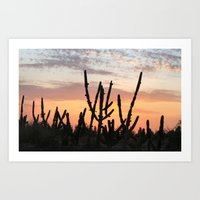 Cactus Sunset Art Print