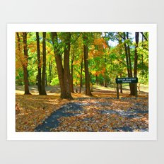 Its Awesome Autumn Now! Art Print
