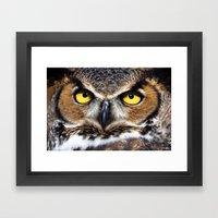 Great Horned Owl Face Framed Art Print
