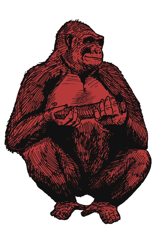 Big Red Ape Canvas Print