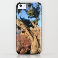 iPhone Cases featuring this canyon is grand. by Hannah Cone