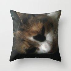 INSOMIAC Throw Pillow