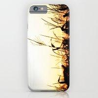 iPhone Cases featuring Maizal by David Bastidas