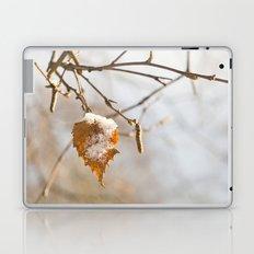 Winter wonders Laptop & iPad Skin