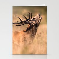 Red Deer Stag Stationery Cards
