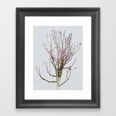 Spirit Tree Framed Art Print