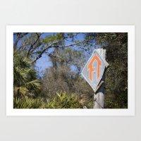 Florida Trail In Winter … Art Print