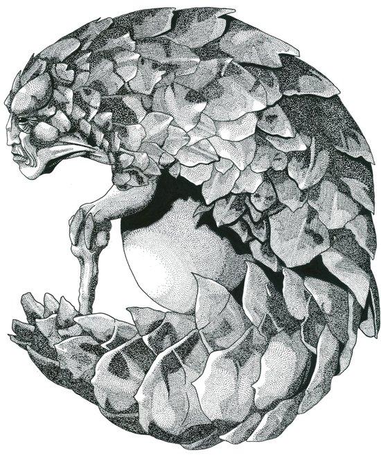 Pangolhumain Art Print
