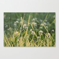 Dusk in the Field Canvas Print