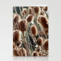 Thistles Stationery Cards