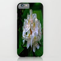 Rhododendron Bloom at Falling Water iPhone 6 Slim Case