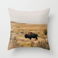Bison Bull On Antelope I… Throw Pillow