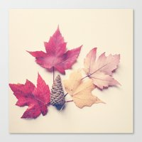 Red Maple Leaf Collectio… Canvas Print