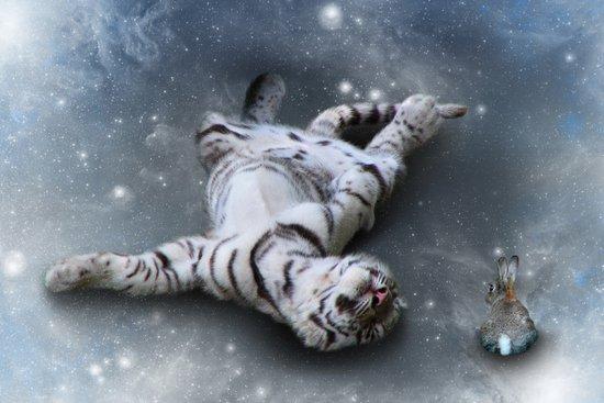 Tiger and Rabbit Art Print
