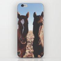 Horse Friends iPhone & iPod Skin