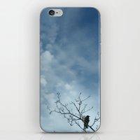 Bird Alone iPhone & iPod Skin