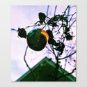 Mid-century ornament Canvas Print