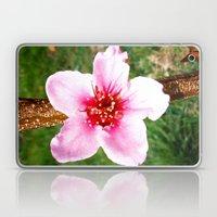 Peach Blossom Laptop & iPad Skin