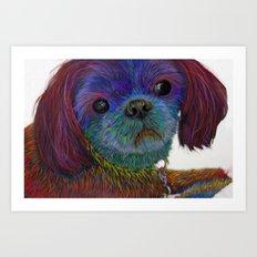 Colorful Shih Tzu Art Print
