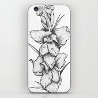 Gladiolus iPhone & iPod Skin
