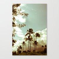 kailua - hawaii 2 Canvas Print