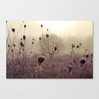 We Stand In The Fog Canvas Print
