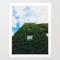Vine Building Art Print