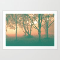 Into The Trees Art Print