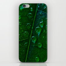 Green Bubbles iPhone & iPod Skin