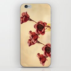 Ruby Red iPhone & iPod Skin