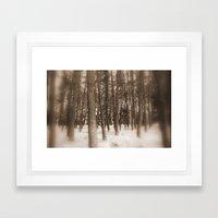 Inside a Forest Framed Art Print