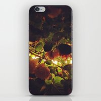 Night Flowers iPhone & iPod Skin