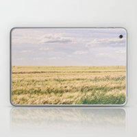 How far you can see? Laptop & iPad Skin