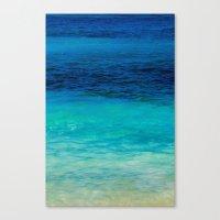 SEA BEAUTY Canvas Print