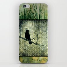 Square Of Crows iPhone & iPod Skin