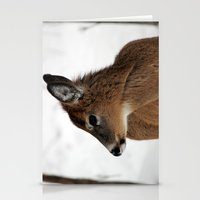 Chevreuil 003 Stationery Cards