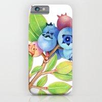 Wild Maine Blueberries iPhone 6 Slim Case