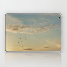 In Flight #7 Laptop & iPad Skin
