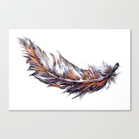 Feather // Illustration Canvas Print